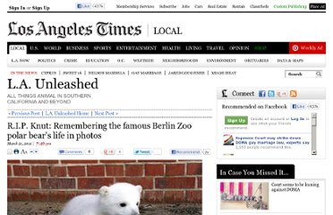 http://latimesblogs.latimes.com/unleashed/2011/03/knut-polar-bear-photos.html