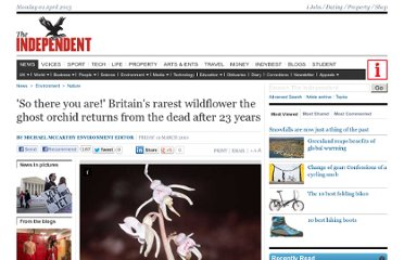 http://www.independent.co.uk/environment/nature/so-there-you-are-britains-rarest-wildflower-the-ghost-orchid-returns-from-the-dead-after-23-years-1923853.html