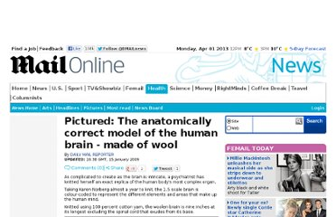 http://www.dailymail.co.uk/news/article-1118052/Pictured-The-anatomically-correct-model-human-brain--wool.html