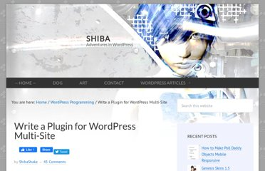 http://shibashake.com/wordpress-theme/write-a-plugin-for-wordpress-multi-site