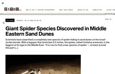 http://www.wired.com/wiredscience/2010/01/giant-middle-eastern-spider-discovered/