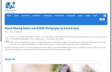 http://www.pxleyes.com/blog/2011/09/award-winning-nature-and-wildlife-photography-by-burrard-lucas/