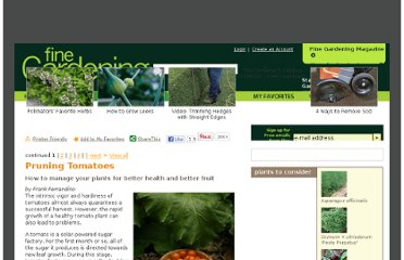 http://www.finegardening.com/how-to/articles/pruning-tomatoes.aspx