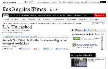 http://latimesblogs.latimes.com/unleashed/2010/08/animals-got-talent-is-this-the-dancing-est-dog-in-the-universe-we-think-so.html