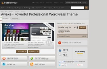 http://themeforest.net/item/awake-powerful-professional-wordpress-theme/111267