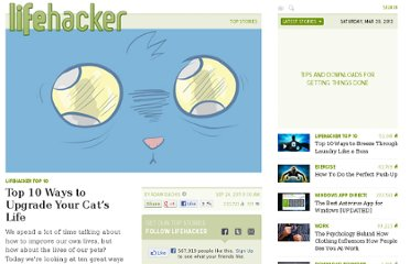http://lifehacker.com/5843058/top-10-ways-to-upgrade-your-cats-life