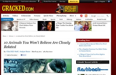 http://www.cracked.com/article_19077_10-animals-you-wont-believe-are-closely-related.html
