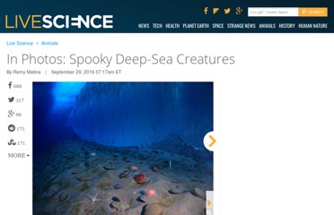http://www.livescience.com/16231-creepy-deep-sea-creatures-gallery.html