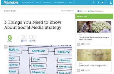 http://mashable.com/2010/01/14/social-media-strategy-needs/