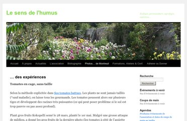http://senshumus.wordpress.com/photos-des-murs-a-peches/photos-variees/