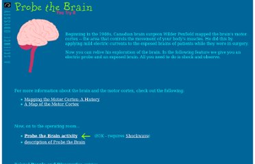 http://www.pbs.org/wgbh/aso/tryit/brain/#