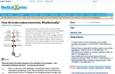 http://medicalxpress.com/news/2011-10-brain-memories-rhythmically.html
