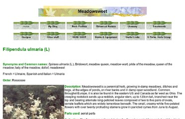 http://www.purplesage.org.uk/profiles/meadowsweet.htm
