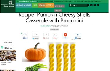 http://www.onegreenplanet.org/foodandhealth/recipe-pumpkin-cheesy-shells-casserole-with-broccolini-2/