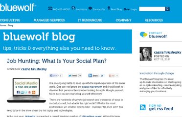http://www.bluewolf.com/blog/job-hunting-what-your-social-plan