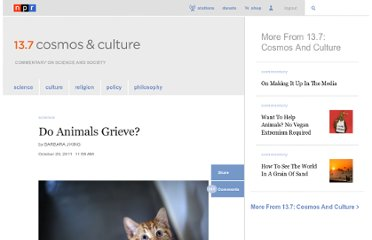 http://www.npr.org/blogs/13.7/2011/10/20/141452847/do-animals-grieve