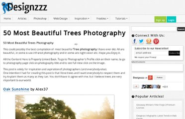 http://www.designzzz.com/beautiful-trees-photography/