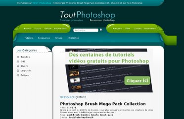 http://www.toutphotoshop.com/ressources/ressource-6-photoshop_brush_mega_pack_collection.html