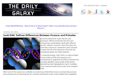 http://www.dailygalaxy.com/my_weblog/2011/10/junk-dna-defines-differences-between-humans-and-primates.html