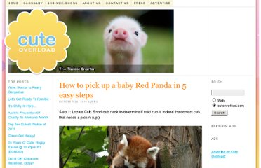 http://cuteoverload.com/2011/10/24/how-to-pick-up-a-baby-red-panda-in-5-easy-steps/