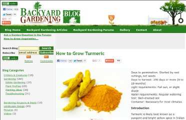 http://www.gardeningblog.net/how-to-grow/turmeric/