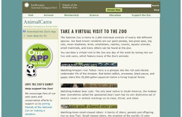 http://nationalzoo.si.edu/Animals/WebCams/default.cfm