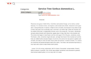 http://secrets-of-self-sufficiency.com/service-tree-sorbus-domestica-l