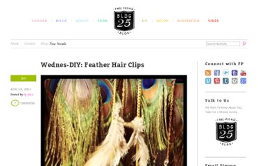 http://blog.freepeople.com/2011/08/wednes-diy-feather-hair-clips/