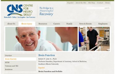 http://www.neuroskills.com/brain-injury/brain-function.php