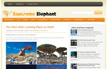 http://awesome-elephant.com/the-most-alien-looking-place-on-earth