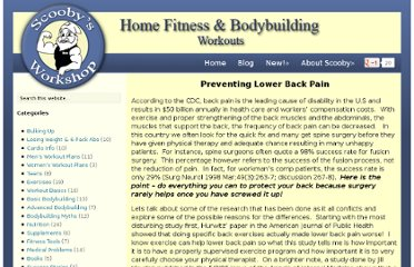 http://scoobysworkshop.com/preventing-lower-back-pain/
