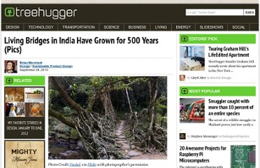 http://www.treehugger.com/sustainable-product-design/living-bridges-in-india-have-grown-for-500-years-pics.html