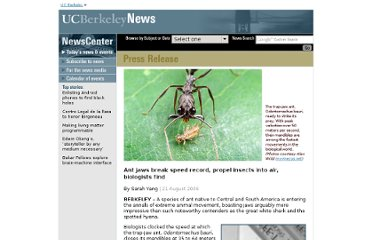 http://www.berkeley.edu/news/media/releases/2006/08/21_ant.shtml