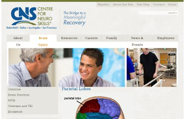 http://www.neuroskills.com/brain-injury/parietal-lobes.php