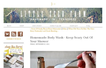http://www.littleseedfarm.com/to-be-a-farmer-blog/homemade-body-wash-keep-scary-out-of-your-shower.html