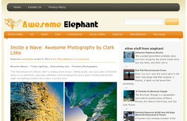 http://awesome-elephant.com/inside-a-wave-awesome-photography-by-clark-little