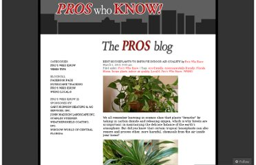 http://proswhoknow.wordpress.com/2010/03/01/best-houseplants-to-improve-indoor-air-quality/