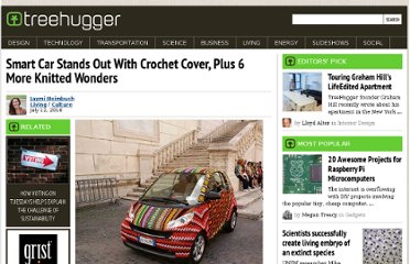 http://www.treehugger.com/culture/smart-car-stands-out-with-crochet-cover-plus-6-more-knitted-wonders.html