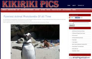 http://kikirikipics.com/funniest-animal-photobombs-of-all-time