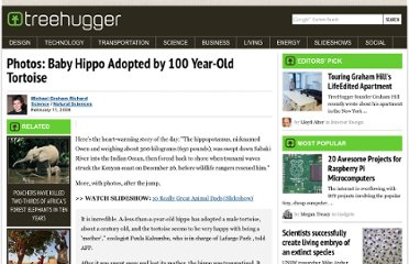 http://www.treehugger.com/natural-sciences/photos-baby-hippo-adopted-by-100-year-old-tortoise.html