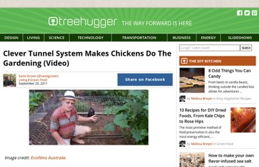http://www.treehugger.com/green-food/clever-tunnel-system-makes-chickens-do-the-gardening-video.html