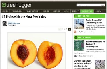 http://www.treehugger.com/slideshows/green-food/12-fruits-with-the-most-pesticides/