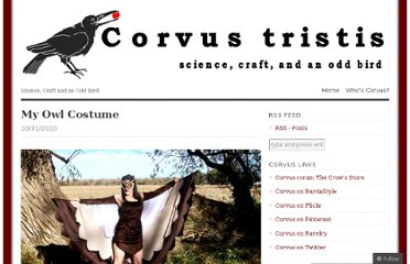 http://corvustristis.wordpress.com/2010/10/31/my-owl-costume/
