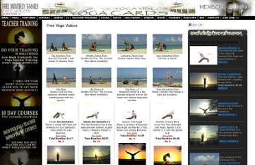 http://www.yogacards.com/yoga-video.html
