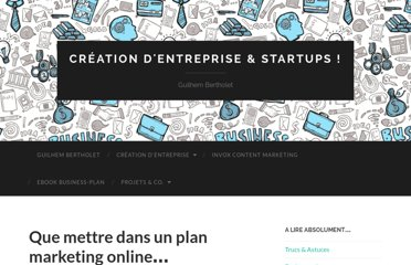 http://www.guilhembertholet.com/blog/2011/11/29/que-mettre-dans-un-plan-marketing-online/