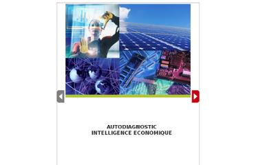 http://www.experts-comptables.fr/design/csoec/html/autodiagnostic-intelligence-economique/