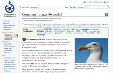 https://commons.wikimedia.org/wiki/Commons:Images_de_qualit%C3%A9#Images_de_qualit.C3.A9_ayant_un_m.C3.A9rite_technique