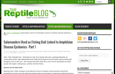 http://blogs.thatpetplace.com/thatreptileblog/2009/05/29/salamanders-used-as-fishing-bait-linked-to-amphibian-disease-epidemics-part-1/