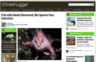 http://www.treehugger.com/clean-technology/fish-with-hands-discovered-but-species-face-extinction.html