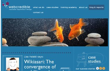 http://www.webcredible.co.uk/user-friendly-resources/web-usability/wikiasari-seo.shtml